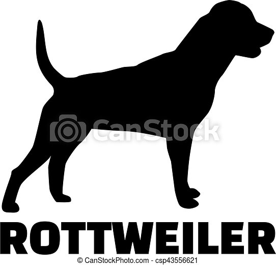 Rottweiler with breed name - csp43556621