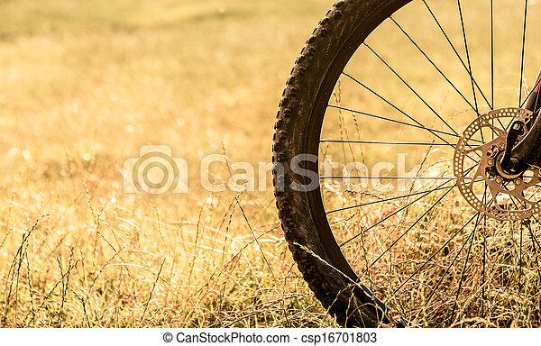 roue, vélo - csp16701803