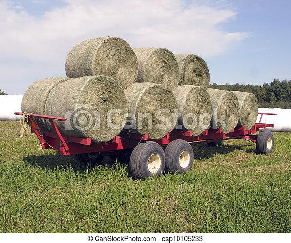 Round bales of hay - csp10105233
