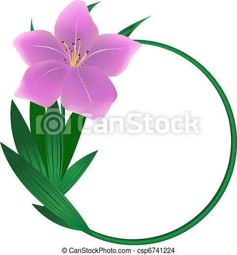 Round lily flower background - csp6741224