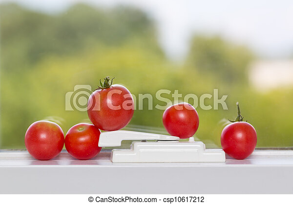 Row of tomatoes on window sill - csp10617212