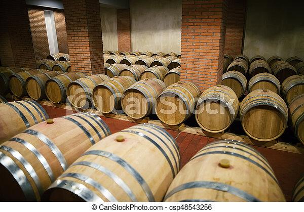 Rows of wooden wine barrels - csp48543256
