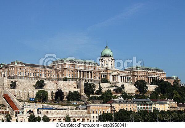 Royal castle Budapest Hungary - csp39560411