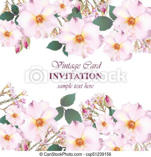 roze, sleutelbloem, roos, flowers., lavendel, uitnodiging, kleuren, delicaat, vector., huwlijkskaart - csp51239156