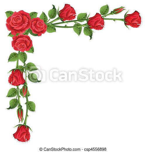 rozen - csp4556898