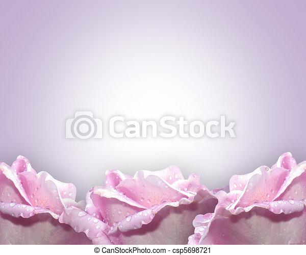 rozen, lavendel - csp5698721