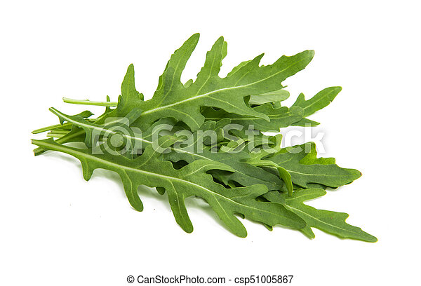 rucola isolated - csp51005867