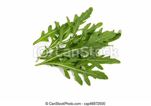rucola isolated - csp46972500