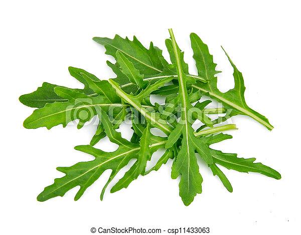 Rucola leaves - csp11433063