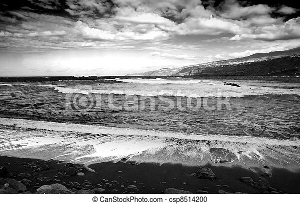 ruige , black , witte , zee - csp8514200