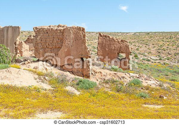 Ruins between yellow flowers  - csp31602713