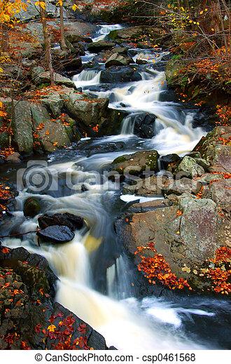 ruisseau, automne - csp0461568