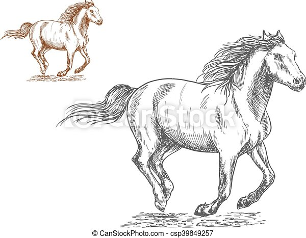 Running horses pencil sketch portrait csp39849257