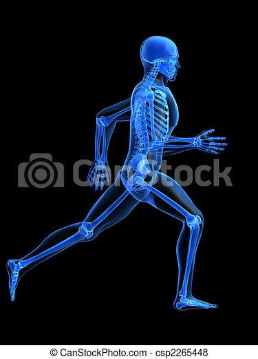 running man anatomy - csp2265448