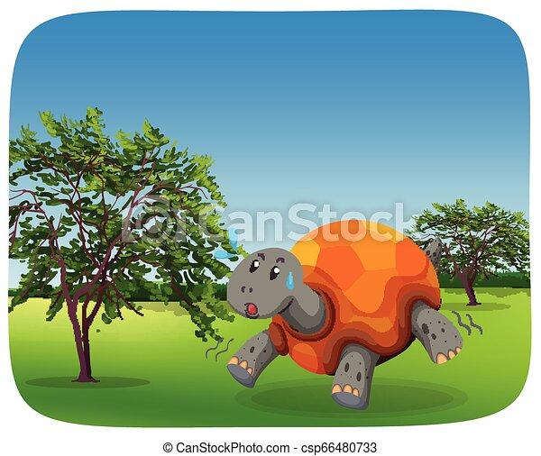 Running turtle in nature scene - csp66480733