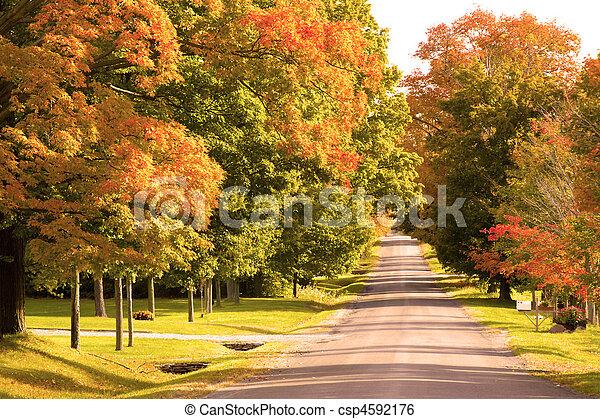 rural, dia, estrada, outono - csp4592176
