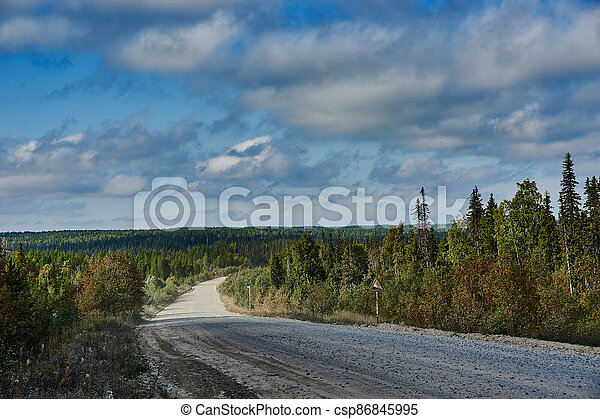 Rural gravel road in the forest - csp86845995