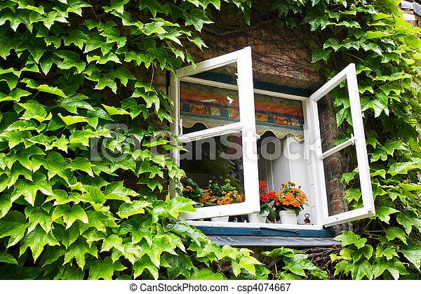 rural house - csp4074667