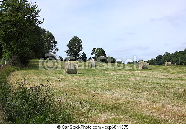 rural landscape, bales of hay in a field in spring - csp6841875