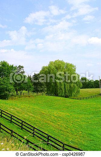 Rural landscape - csp0426987
