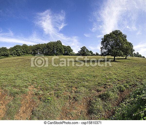 Rural landscape - csp15810371
