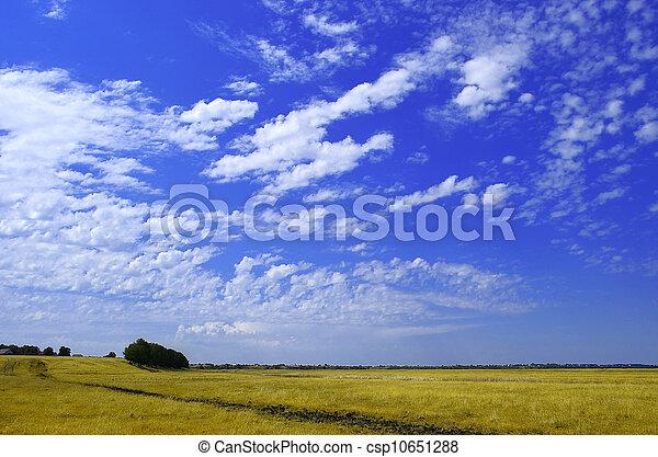 rural landscape - csp10651288