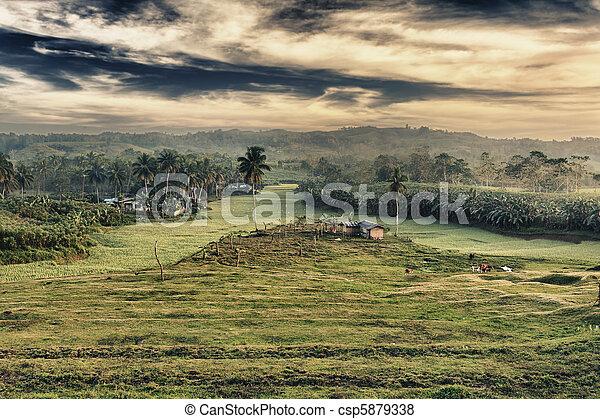 Rural landscape - csp5879338