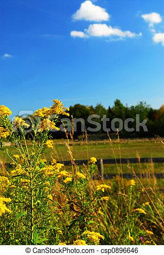 Rural landscape - csp0896646