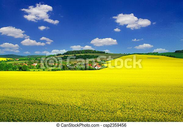 Rural landscape - csp2359456