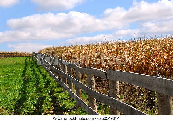 Rural landscape - csp0549314