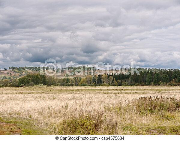 Rural Landscape - csp4575634