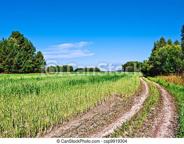 Rural landscape - csp9919304