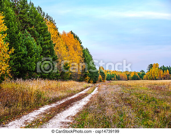 Rural Landscape - csp14739199