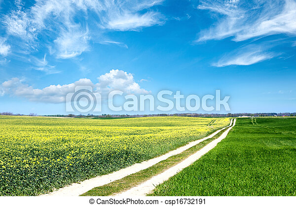 Rural landscape - csp16732191