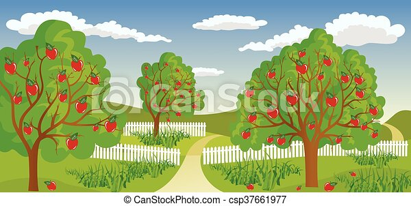Rural landscape with apple tree - csp37661977