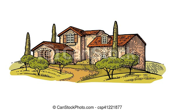 Rural landscape with villa or farm with field, olive tree and cypress - csp41221877
