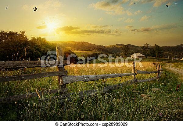rural, paisagem., capim, arte, campo - csp28983029