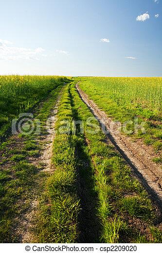 Rural road at sunset - csp2209020