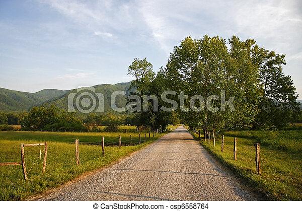 Rural Road  - csp6558764