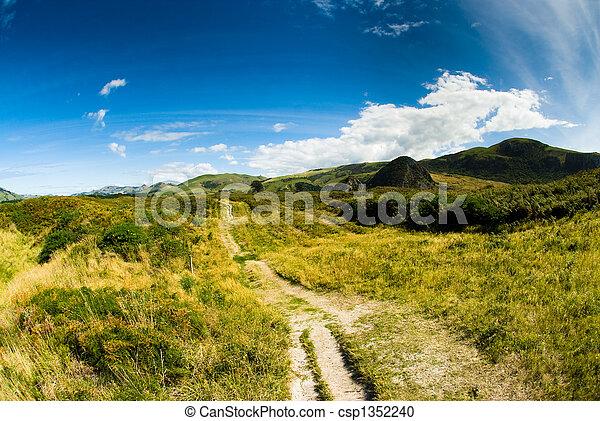 rural scenery at dunedin - csp1352240