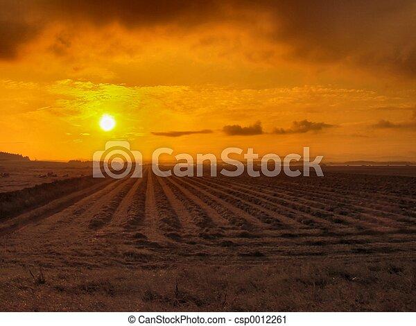Rural sunrise - csp0012261