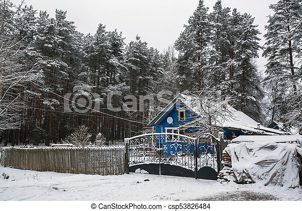 Rural winter landscape in the Republic of Karelia, Russia. - csp53826484