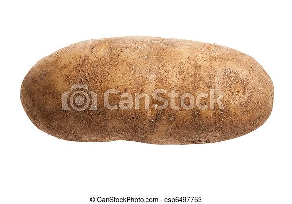Russet Potato - csp6497753