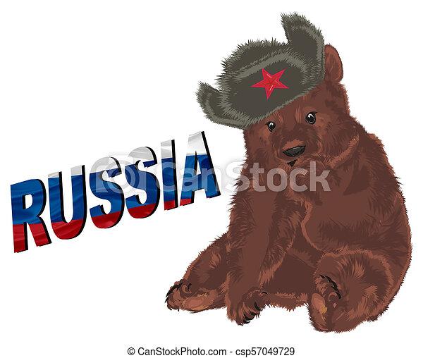 russian brown bear - csp57049729