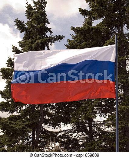 Russian flag - csp1659809