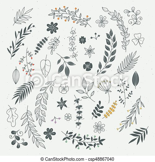 Rustic Hand Drawn Ornaments With Branches And Leaves Vector Floral Frames Borders
