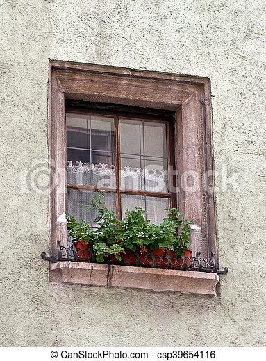 Fenetre Rustique rustique, fenêtre, européen. rustique, maison, fenêtre, fleur, box.