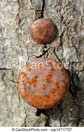 Rusty Nail Head