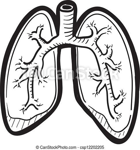 rys, płuco, ludzki - csp12202205