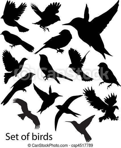 sæt, birds., vektor - csp4517789